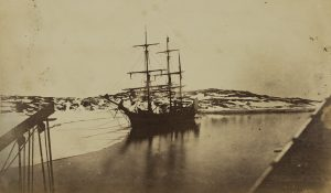 Photograph: 'Polynia at the edge of the ice'